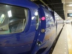 南海電鉄に乗ってみたかった (8)