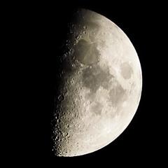 月齢7.6(上弦の月)