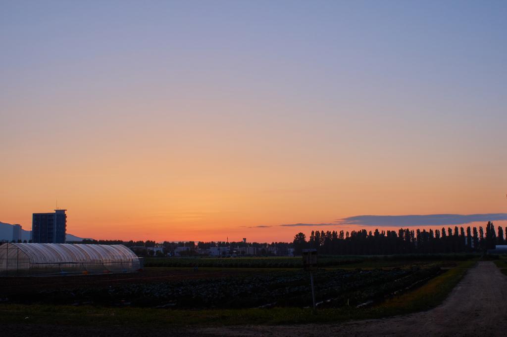 北海道大学生物生産研究農場