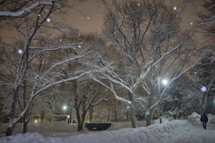 最後の雪景色かな?