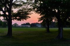 誰もいない夕暮れの公園・・・と思ったら・・・