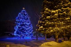 Blue Christmas Tree in BIEI Town