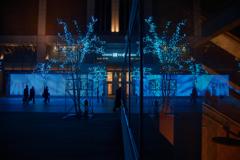 Blue reflection scenery