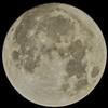 中秋の名月(月齢14.2)