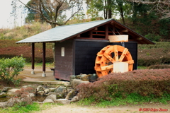 Water mill①