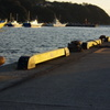 漁港 岸壁 夕日