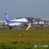 全日空 Boeing 777-381ER JA779A②