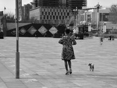 ご婦人と愛犬
