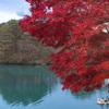 毘沙門沼紅葉