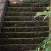 猫のいる石段 IMG_0056