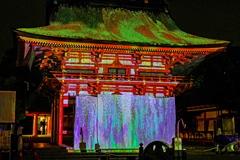 津島神社  プロジェクションマッピング 「藤」