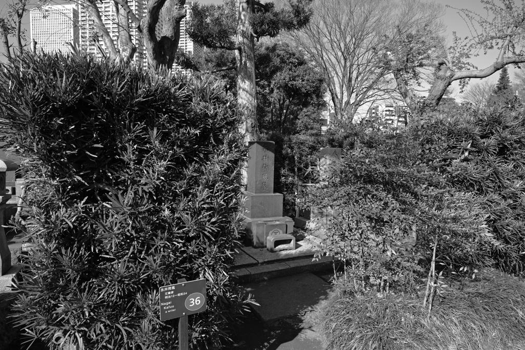 永井荷風の墓