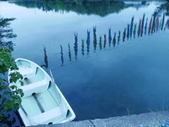 湖畔の鯉のぼり
