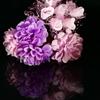 おうちdeフォト「造花の美」