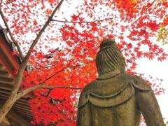 背中に感じる哀愁の秋