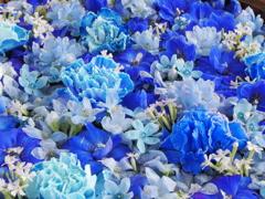 野見神社の花手水3