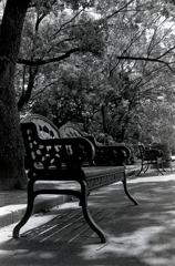 回想録(College Days)023「昼下がりのベンチ」