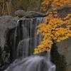 滝に紅葉はよく似合う