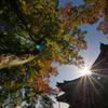 一乗寺と秋の空