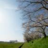 玉川の里2021「春うらら」
