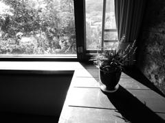 窓辺の風景 ~B/W~