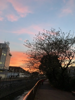 二色の夕焼け