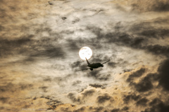 幻想的な空へ Take Off