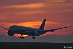 日没の到着便