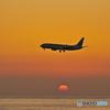落陽時の到着便