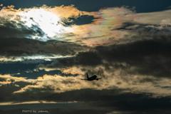 色づく雲の下に