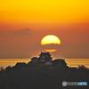 松山城に落ちる夕陽