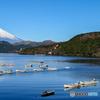 快晴の芦ノ湖と富士山
