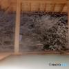 中禅寺湖畔で雪見露天風呂