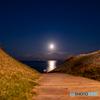 月へと続く路