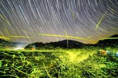 蛍の乱舞と星空景色