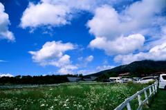 Kiyosato Highland