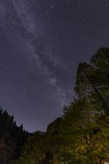 森と星。②