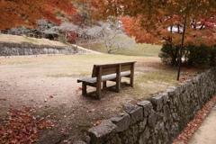 秋とベンチ
