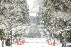 雪の東照宮 ☆