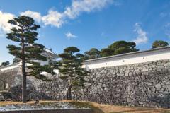 城壁 二本松城 日本100名城