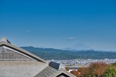 遥かに富士