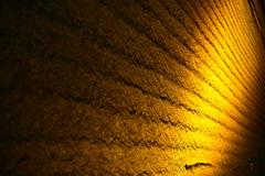 金色の跡(大谷石採掘場跡)