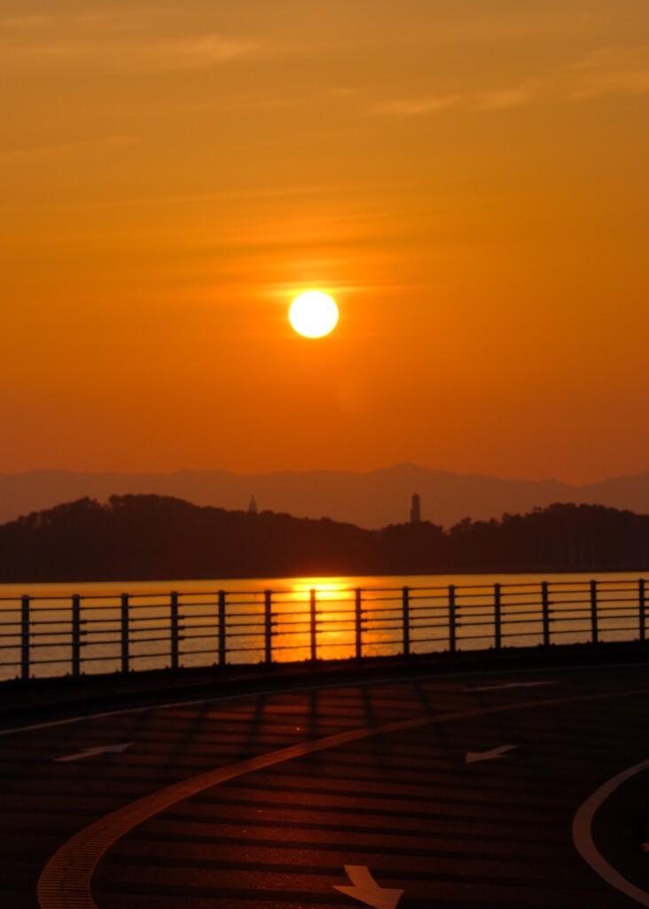 今日の朝陽