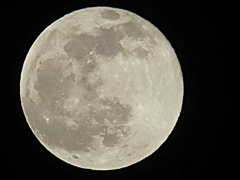 極寒!蟹座の満月。