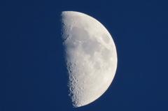 上弦の月(夕方)