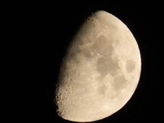 月齢8.0