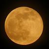 さそり座の満月。