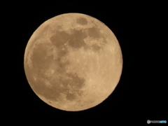 JUST蠍座の満月★
