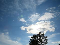見上げた空は、