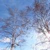 嵐が去って青い空